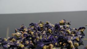 Hierbas y flores secas para la infusión herbaria almacen de metraje de vídeo
