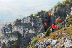 Hierboven lettend op de mooie herfst van Royalty-vrije Stock Fotografie