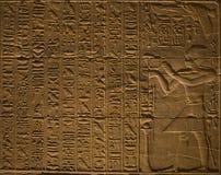 hieroglify Fotografia Stock