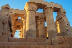 Hieroglify na kolumnach w hipostyl sali zdjęcia royalty free
