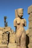 Hieroglyphen Obraz Royalty Free