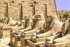 Hieroglyphen Zdjęcie Royalty Free