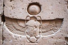 Hierogliph del escarabajo Fotos de archivo