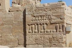 Hierogliphs na świątyni Karnak, Egipt Fotografia Stock