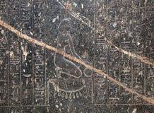 Hieroglyf på British Museum Arkivbild