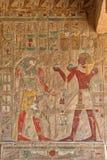 Hieroglyfer på den Hatshepsut templet Luxor arkivfoto