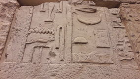 Hieroglyferegyptier Royaltyfri Bild