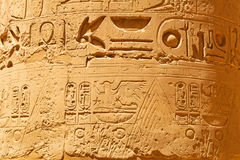Hieroglyfiskt på pelarna av den karnak templet royaltyfria bilder