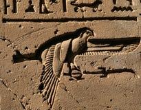 hieroglyph för 2 fågel Arkivbilder
