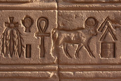Hieroglyph at Philae Stock Image