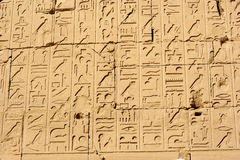 Hieroglyph wall. Old egypt hieroglyphs carved on the stone at Karnak temple Stock Image