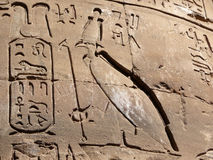 Hieroglyph wall. In an egyptian temple Royalty Free Stock Photo