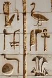 Hieroglyphen - nahes hohes Stockfoto