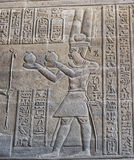 Hieroglyphic carvings on an ancient egyptian temple wall Stock Photography