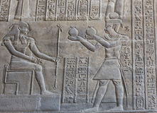 Hieroglyphic carvings on an ancient egyptian temple wall Royalty Free Stock Image