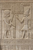 Hieroglyphic carvings on an Egyptian temple wall Stock Images