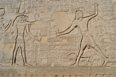 Hieroglyphic carvings on an egyptian temple wall Stock Photography