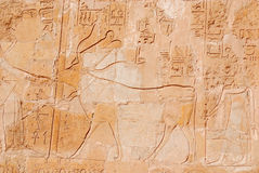 Hieroglyphic carvings Stock Photography