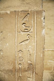 Hieroglyphic egiziano fotografia stock