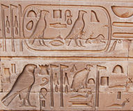 Hieroglyphic Panel. A hieroglyphic panel from the temple of Luxor in Egypt with a Royal Cartouche visible stock image