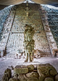 Hieroglyphic Stairway at Mayan Ruins - Copan Archaeological Site, Honduras Royalty Free Stock Photo