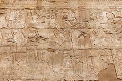 Hieroglyphics в виске Karnak, Луксоре, Египте стоковая фотография rf