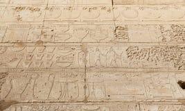 Hieroglyphics в виске Karnak, Луксоре, Египте стоковое фото