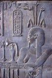 αιγυπτιακό hieroglyphics Στοκ φωτογραφία με δικαίωμα ελεύθερης χρήσης