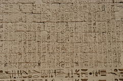 Hieroglyphics. Ancient Egyptian hieroglyphics royalty free stock photos