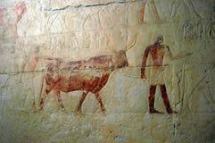 Hieroglyphics antichi Fotografia Stock Libera da Diritti