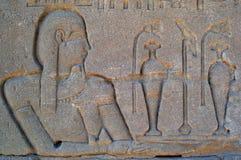 Hieroglyphics di Eygpt Fotografia Stock