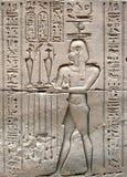 Hieroglyphics no templo de Edfu foto de stock