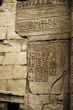 Hieroglyphisches Schreiben mit Könige Cartouche, Karnak Stockbilder