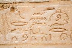 Hieroglyphs λεπτομέρειας στο ναό Edfu Στοκ Εικόνες