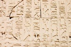 Hieroglyphs egípcios. Teste padrão do templo de Karnak Foto de Stock Royalty Free