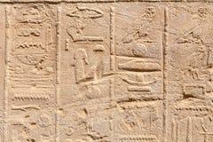 hieroglyphs egypt Arkivbild