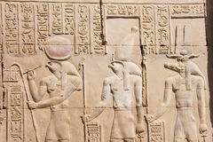 Hieroglyphs i det Edfu tempelet Royaltyfri Bild
