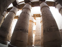 Hieroglyphs in Karnak temple in  Luxor, Egypt Stock Image