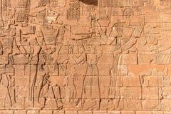 Hieroglyphs of Nubian egyptian gods royalty free stock image