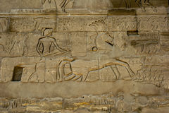 Hieroglyphs and reliefs carved into a wall at Karnak Temple (Temple of Amun) in Luxor, Egypt. Hieroglyphs and reliefs carved into a wall at Karnak Temple ( Royalty Free Stock Photography