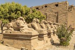 Hieroglyphen Stock Photos