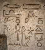 Hieroglyphs Royalty Free Stock Photo