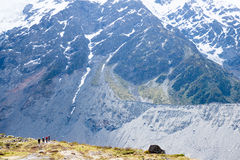 Hiers on mountain, Mount Cook, New Zealand Royalty Free Stock Image