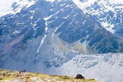 Hiers på berget, monteringskock, Nya Zeeland Royaltyfri Bild
