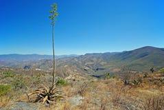 Hierve el阿瓜,墨西哥 免版税图库摄影