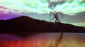 Hierve el agua góry timelapse zdjęcie wideo