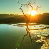 Hierve el Agua Royalty Free Stock Photo