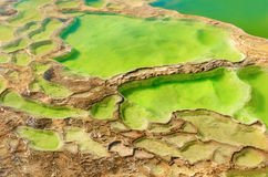 Hierve Gr Agua in de Centrale Valleien van Oaxaca mexico stock foto