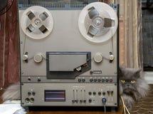 Hifi Stereotonbandgerät und Katze lizenzfreie stockfotos