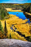 High Above a Beaver Lodge on a Pond Stock Image